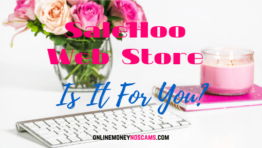 SaleHoo Web Store Is It For You