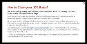 Take Surveys For Cash Only