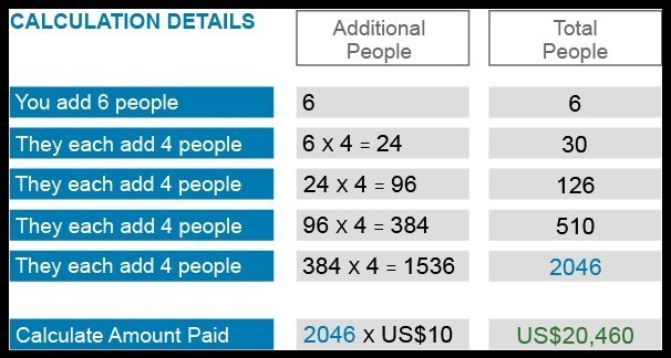 bUnited Review Estimated Payouts